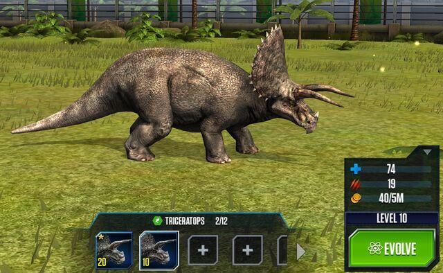 File:Triceratops Base.jpg