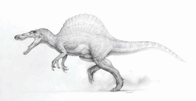 Archivo:Spinosaurus-JP3-01.jpg