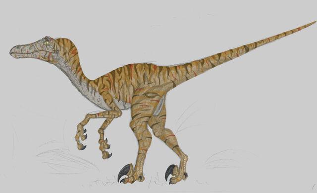 File:Jurassic Park Velociraptor.jpg