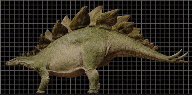File:Stegosaur3tc-1-.jpg
