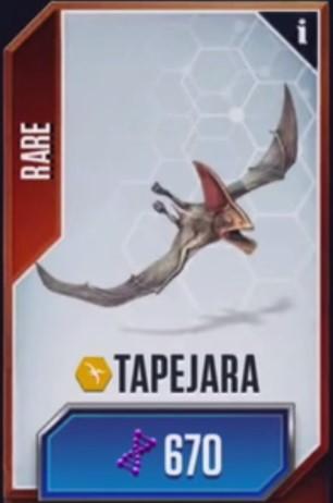 File:Tapejara JWTG.jpg