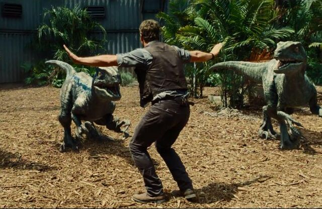 File:Chris-pratt-velociraptor-jurassic-world.jpg