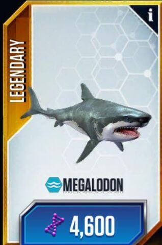 File:Megalodon.jpg