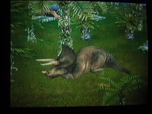 File:Triceratops sleeping.JPG