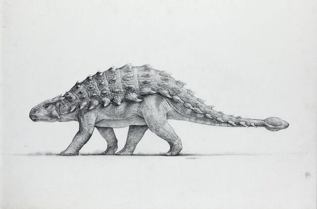File:Artwork-anklyosaurus.jpg