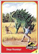 Stegosaurus collector card