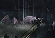 Parasaur5.png
