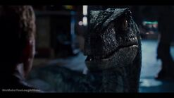 Jurassic world blue by wemakeyoulaughfilms-d93bx8k