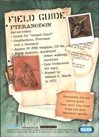 File:2001 Jurassic Park III 3-D 58 Pteranodon back.jpg