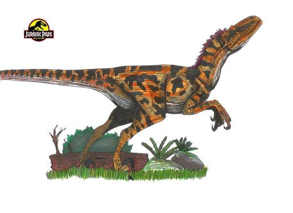 File:Jurassic Park Utahraptor.jpg