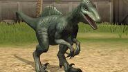 Spinoraptorscare
