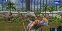 Metriaphodon