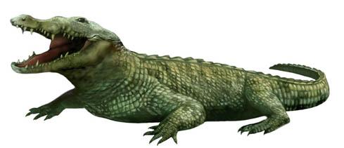 File:Karen Carr Royal Tyrrell Deinosuchus detail.jpg