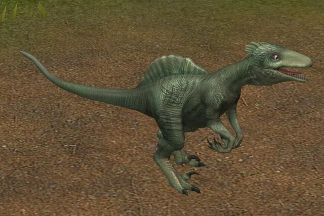 File:Spinoraptor (0) (Name meaning Spined thief).jpg