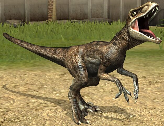 File:Velociraptor lvl 10.jpg
