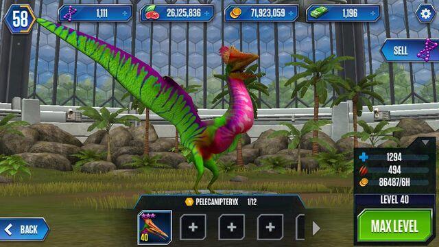 File:PelecanipteryxMax.jpg