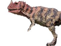File:Ceratosaurus jurassic park III.jpg