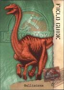 2001 Jurassic Park III 3-D 66 Gallimimus front