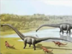 File:Diplodocus hallorum.png