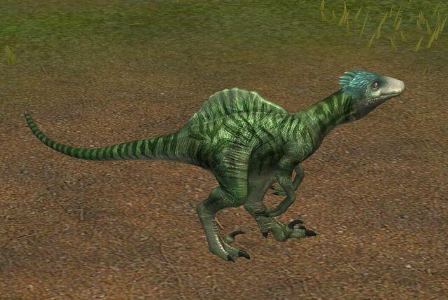 File:Spinoraptor (1) (Hybrid of Spinosaurus + Utahraptor).jpg