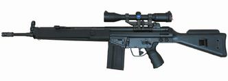 Heckler and Koch HK 91