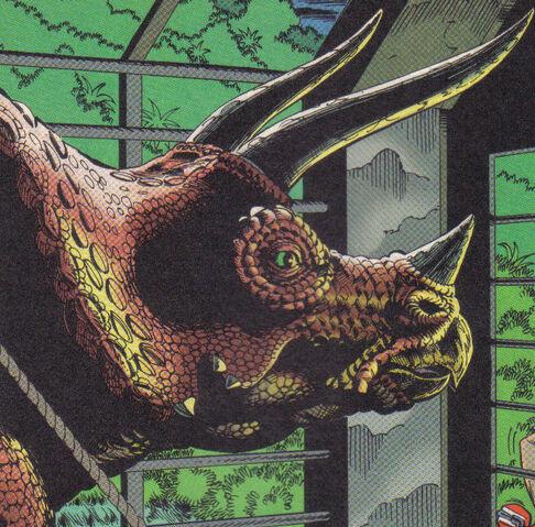 Archivo:Triceratopstopps.jpg