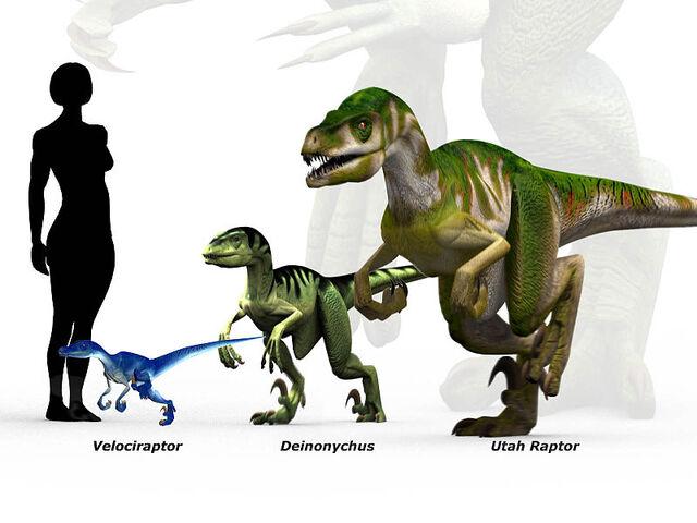 File:800px-Raptor scale.jpg