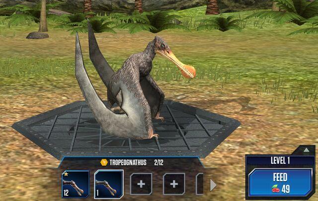 File:Tropeognathus Base.jpg