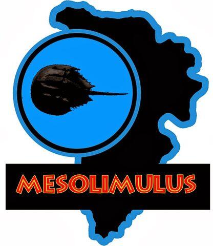 File:Jp Mesolimulus.jpg