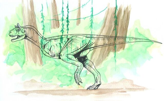 "File:Carnotaurus Sastrei ""Chameleo"" (87).jpg"