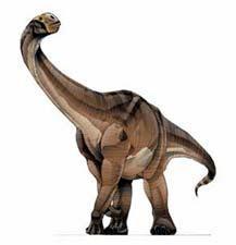 Archivo:Cetiosaurus.jpg