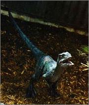 File:Raptor delta.png