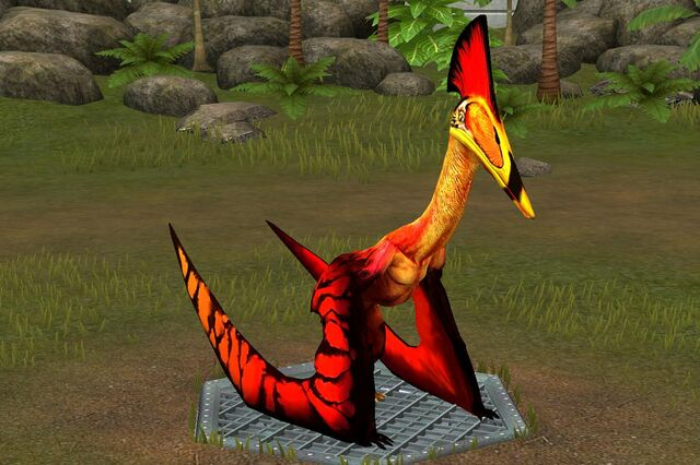 File:Hatzegopteryx (19).jpg