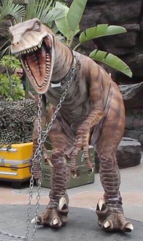 File:Raptor zulu.jpg