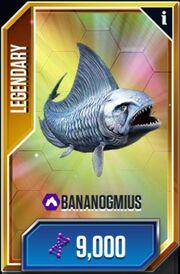 Bananogmius-1