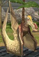 Coloborhynchus lvl 20