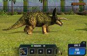 Triceratops 2S