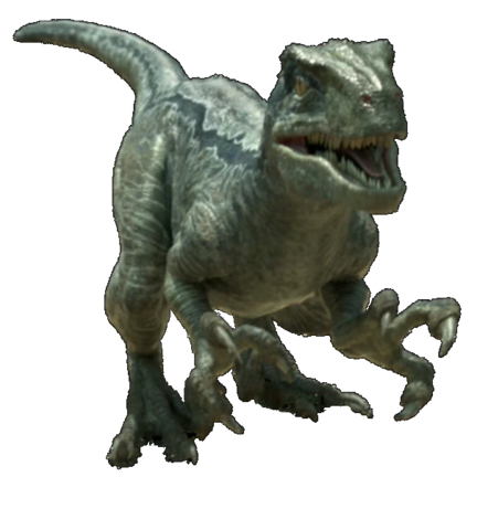 File:Jurassic world velociraptor v4 by sonichedgehog2-da9f2eg.png
