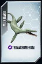 Trinacromerium.jpg