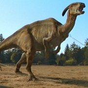 File:Parasaur.jpg