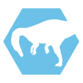 File:Suchomimus-header-icon.png