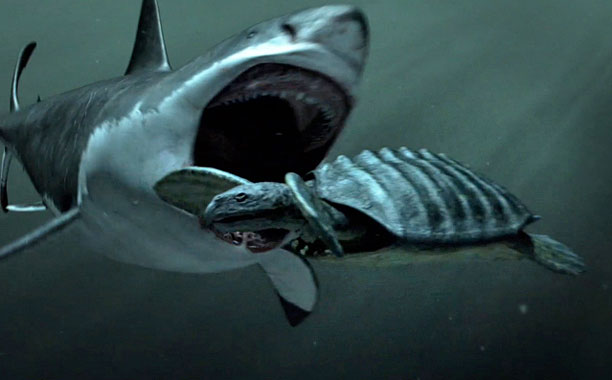 File:MEGA SHARK VS GAMERA.jpg
