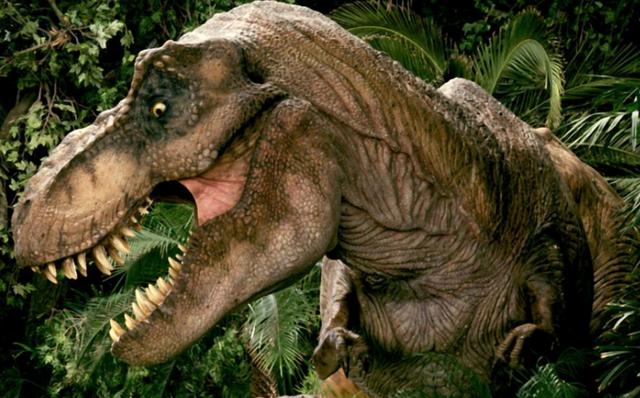 File:Tyrannosaurdoe.png