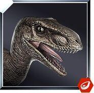 Velociraptor icon JW