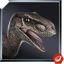 File:Velociraptor icon JW.jpg