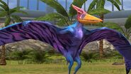 Pterandon JW TG 4.0