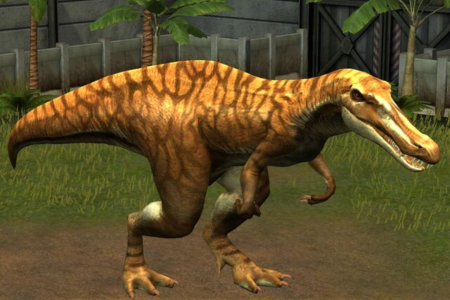 File:Suchomimus Tenerensis (49).jpg