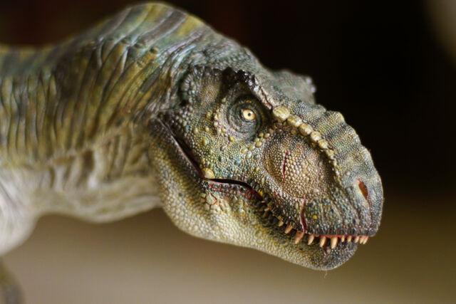 File:T rex male tlw by manusaurio-d6ilbfy.jpg