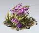 Purple Flowers (Glacier)