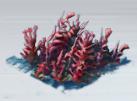 File:Kelp Bed.png